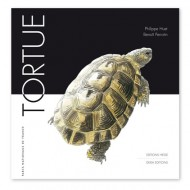 Tortue éditions Hesse Faune Sauvage